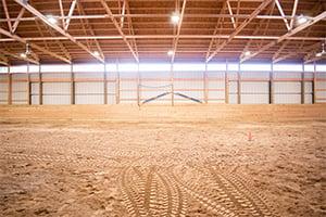 Equine Foundation