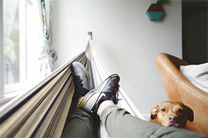Relax with Dog