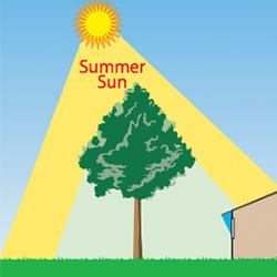 SummerSun_EnergyEfficientLandscaping