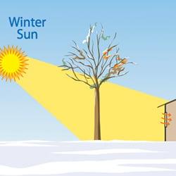 WinterSun_EnergyEfficientLandscaping
